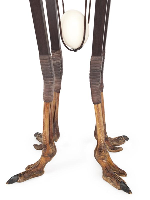 struisvogel ei